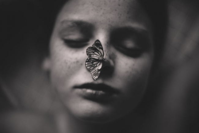 The Butterfly Pet. Ph: Келли Тьяк, Австралия